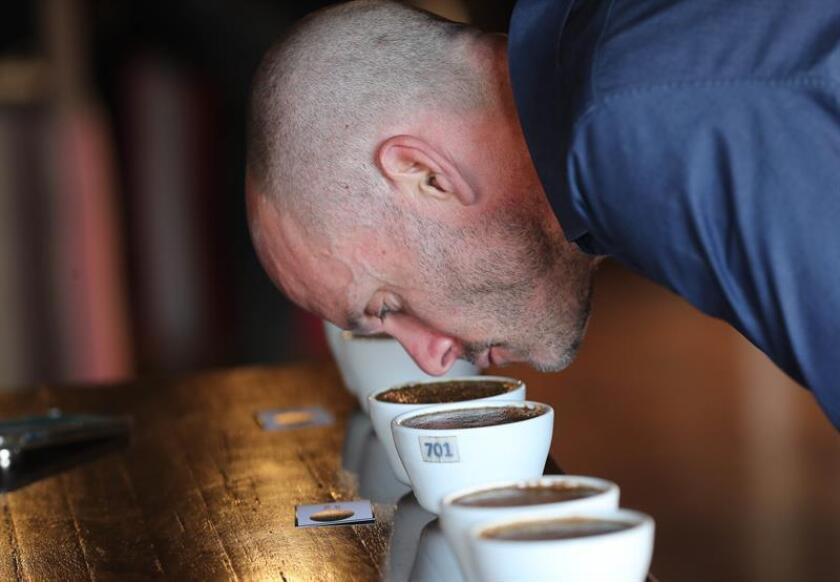 """El """"Cup of Excellence"""", uno de los principales concursos para evaluar la calidad de los cafés alrededor del mundo, galardonará el lote brasileño con el """"sabor más complejo"""" y para ello el tribunal ha probado diferentes tazas a lo largo de la semana. EFE/Archivo"""