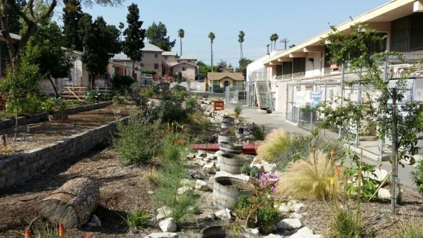 The Enrich LA garden at El Sereno Middle School.