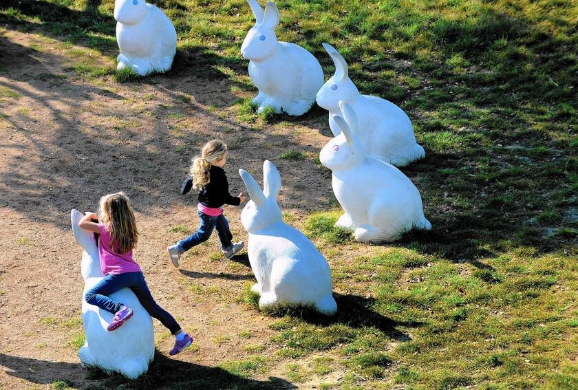 Kids play among the bunnies.