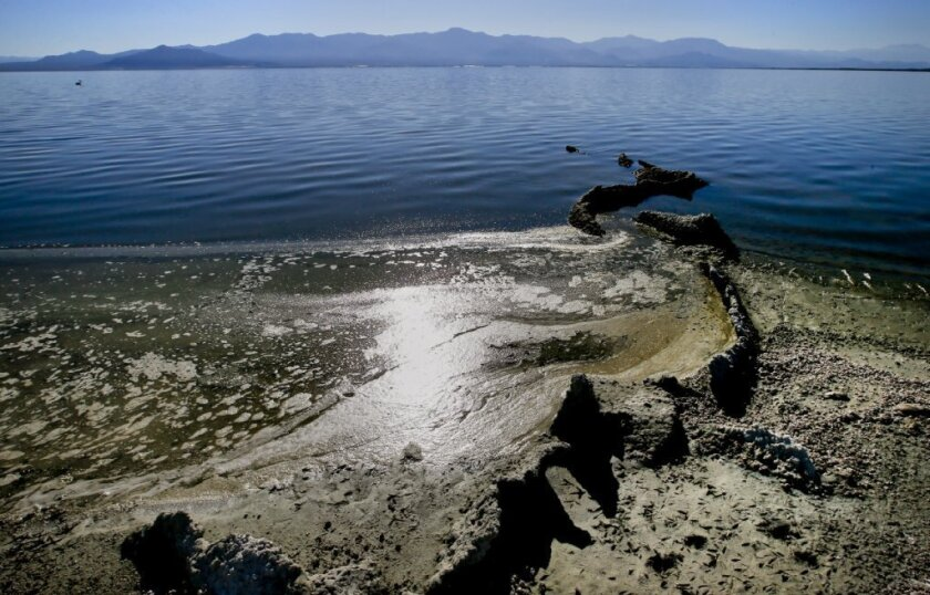 As the Salton Sea has shrunk, exposing previously submerged areas, toxic dust storms have increased in the Coachella and Imperial valleys, and a rotten-egg smell has drifted to much of coastal Southern California.