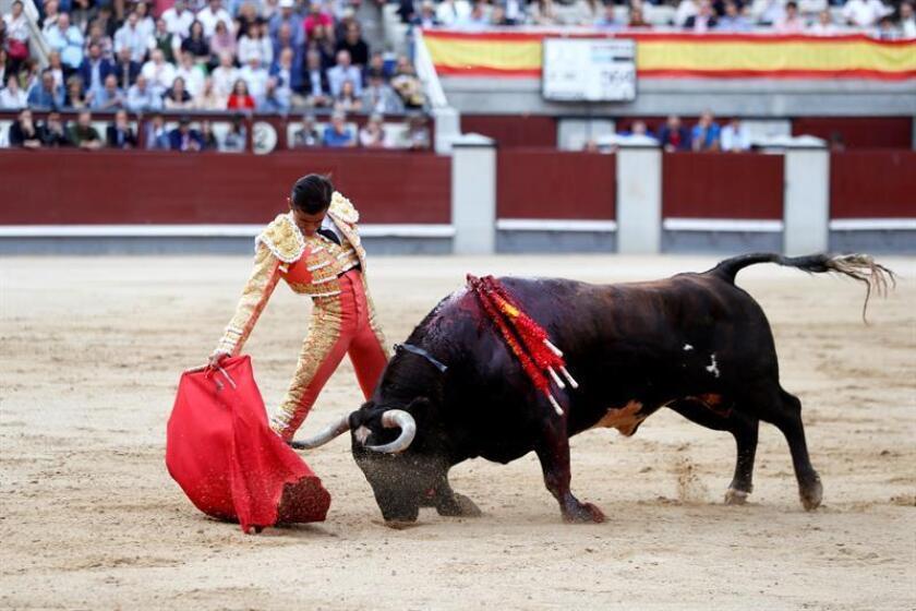 En la imagen un registro del diestro mexicano Joselito Adame, quien le cortó las dos orejas este domingo al primer toro de su lote en el mano a mano con su compatriota Jerónimo, en la plaza de Teziutlán. EFE/Archivo