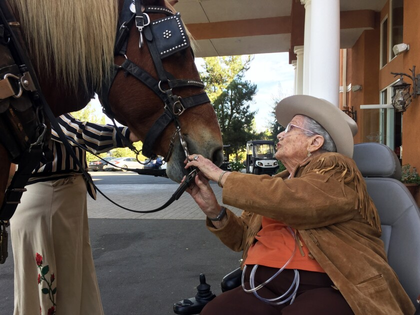 Opal Hagerty, 95, of Escondido meets Blossom, a 16-year-old Belgian draft horse, before a carriage ride on Friday in Temecula.