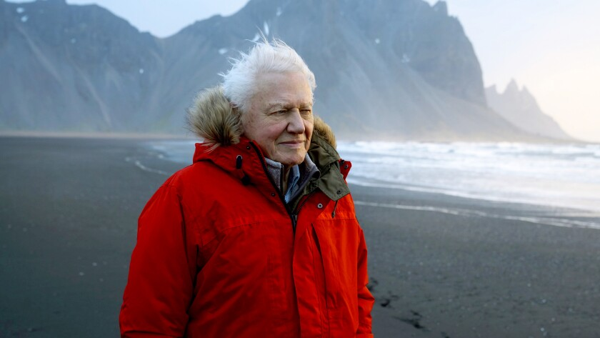 "Sir David Attenborough in""Seven Worlds, One Planet,"" a special preview of the new series on BBC America."