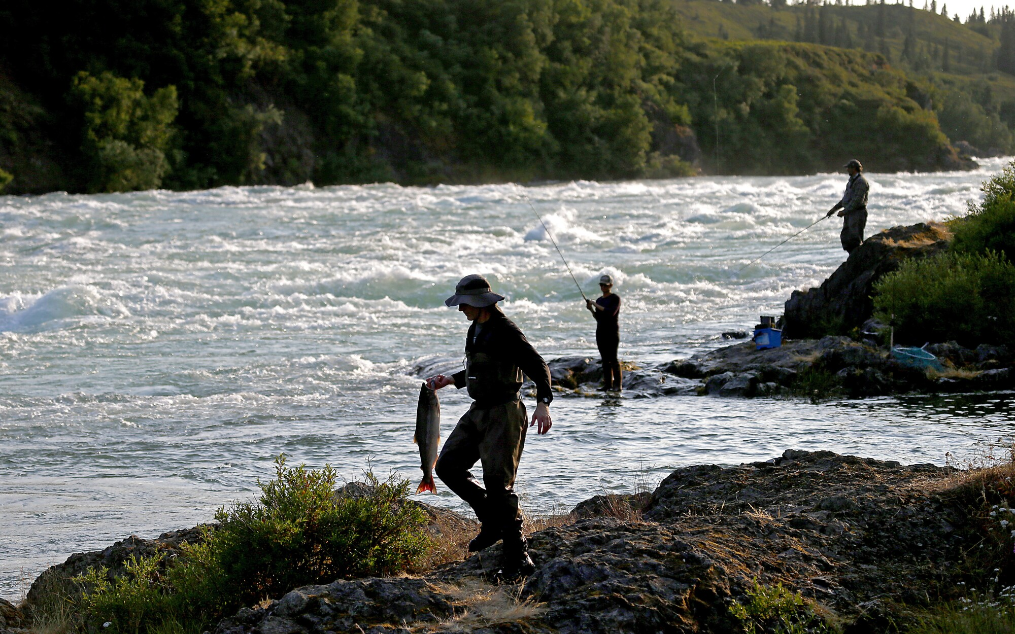 Fishing for sockeye salmon in the Newhalen River near Iliamna, Alaska.