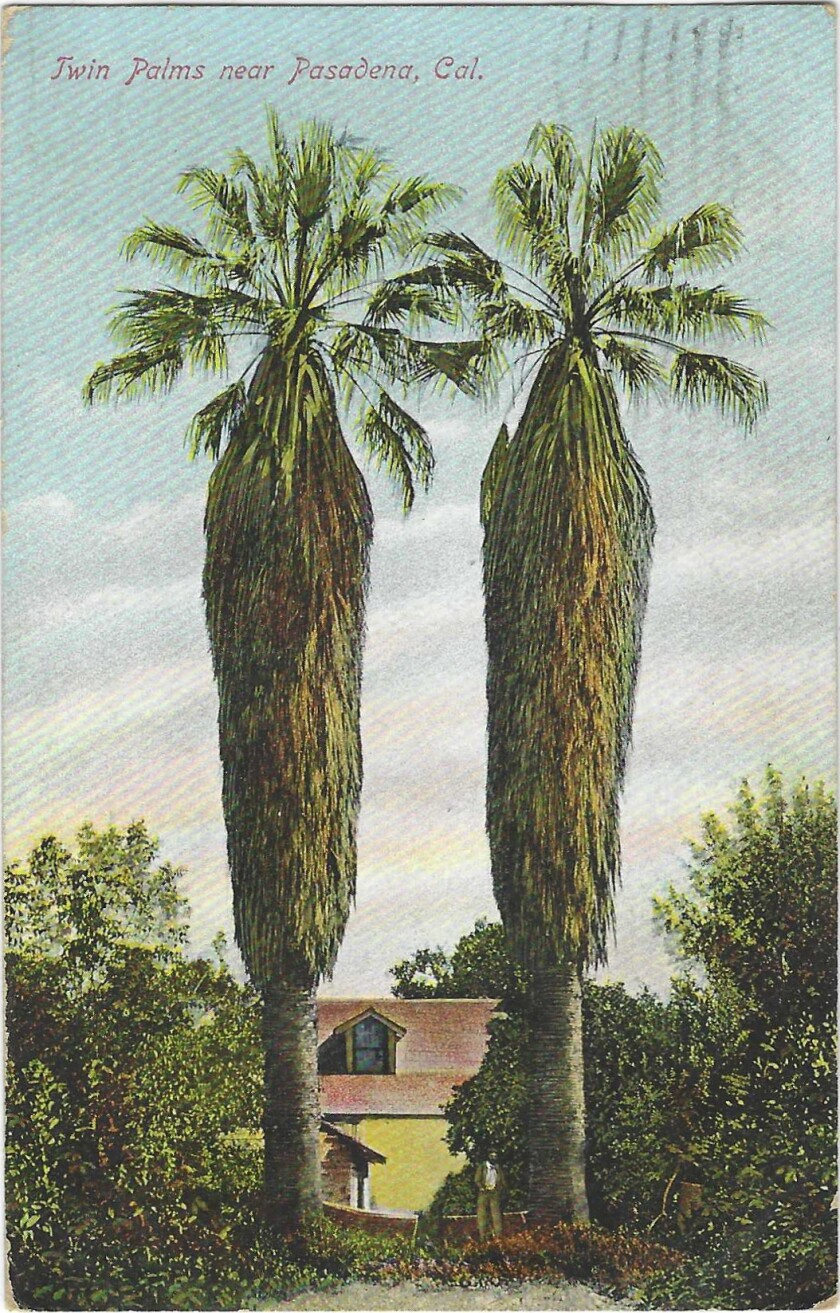 """""""Twin Palms near Pasadena, Cal."""" reads a vintage postcard showing a pair of trees framing a small yellow home."""