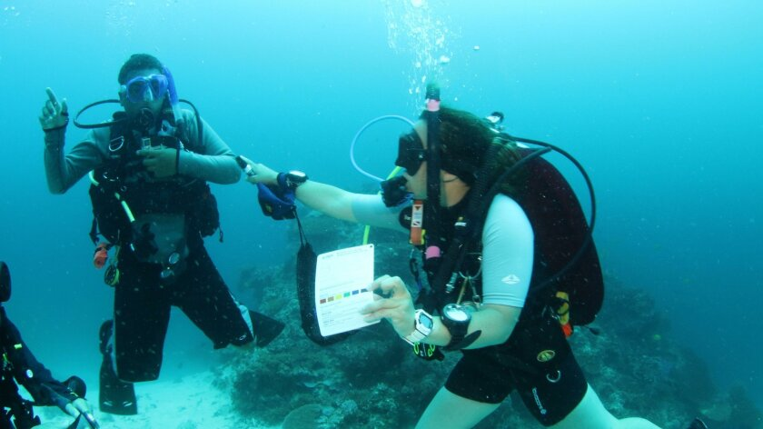 """Tennessee Cumming, 12, of Rancho Santa Fe, undergoes testing with instructor  Elizabeth """"Bethy"""" Driscoll in the waters off Fiji May 16, 2016, to achieve his certification as the world's youngest Junior Master Scuba Diver."""