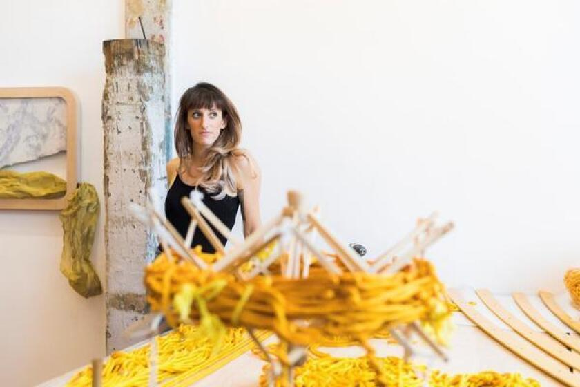 Coming Nov. 17: Installation artist-in-residence Rachel Mica Weiss