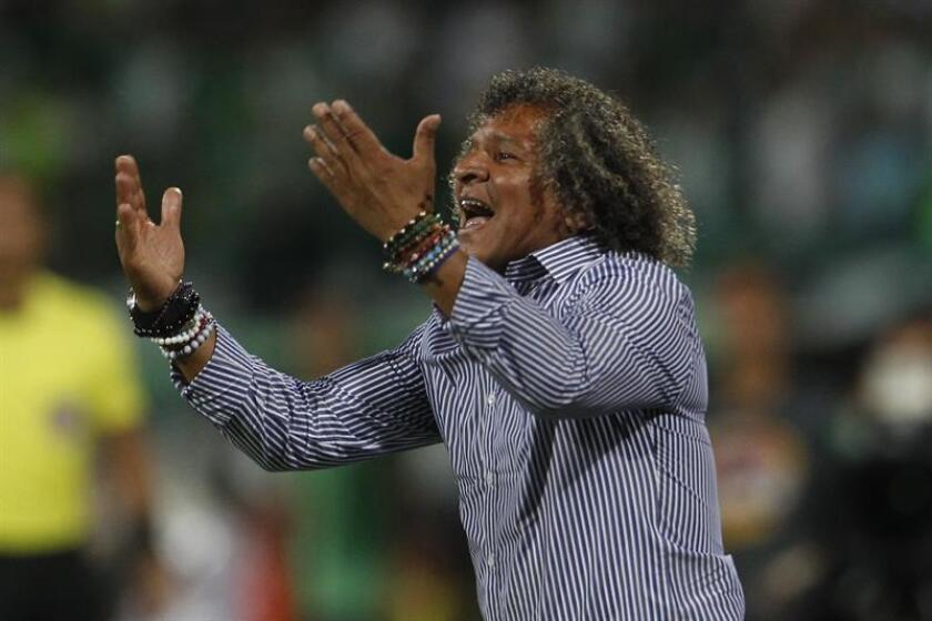 El director técnico de Tolima, Alberto Gamero. EFE/Archivo