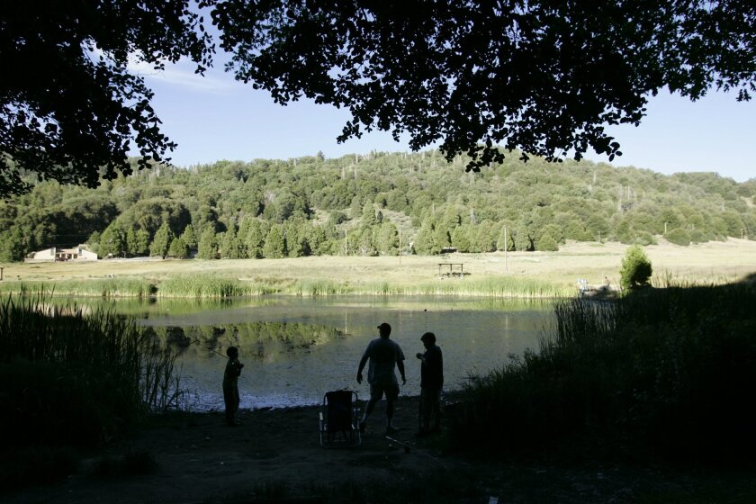 Palomar Mountain State Park is a favorite spot in San Diego for people to get away from the urban area. Activities including hiking, camping, birdwatching and fishing.