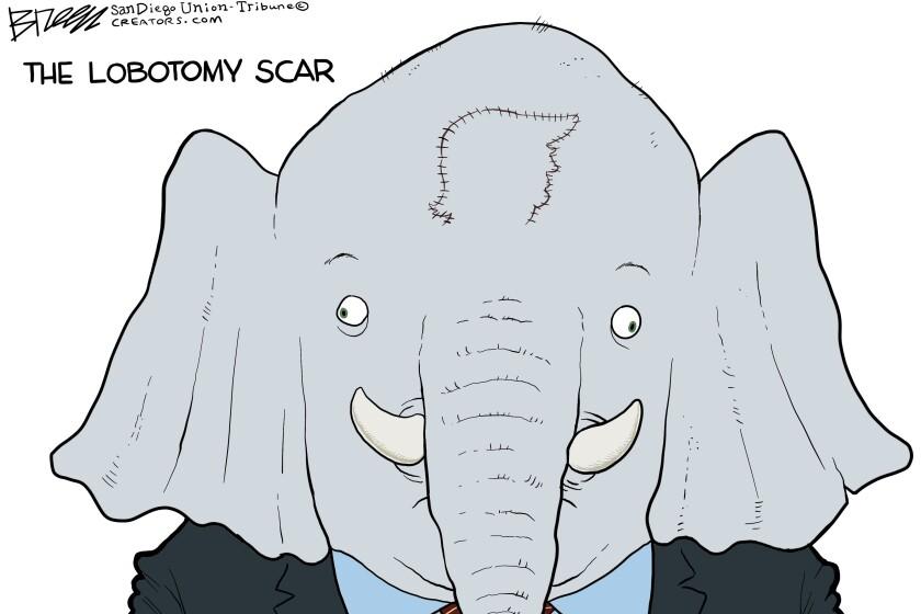 An elephant has a lobotomy scar in the shape of Trump