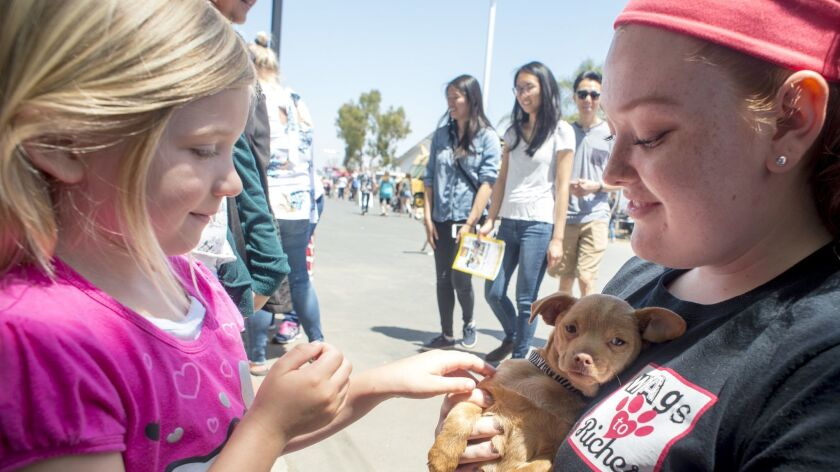 Kimmy Goldwasser, left, pets a terrier-mix puppy held by Maddy Marsh during the 2018 America's Family Pet Expo. The event returns Friday through Sunday at the OC Fair & Event Center in Costa Mesa.