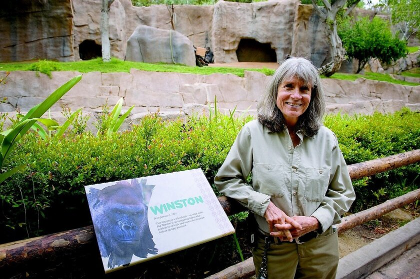 Peggy Sexton is the lead keeper of all the mammals, except elephants, at the Safari Park. Tom Pfingsten