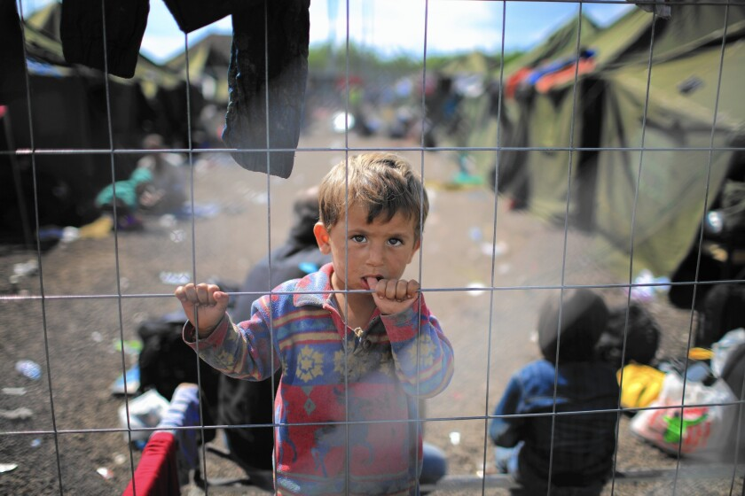 A child looks out from a migrant holding camp at the Hungarian border with Serbia on Sept. 12, 2015.