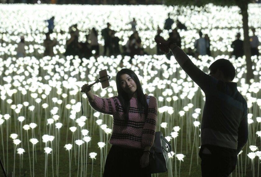 """A woman takes a selfie in front of the LED lights roses at the """"Light Rose Garden"""" in Hong Kong, Saturday, Feb. 13, 2016. """"Light Rose Garden"""" is originated from South Korea, an art installation project featuring 25,000 white roses made of LED lights for Valentine's Day. (AP Photo/Kin Cheung)"""