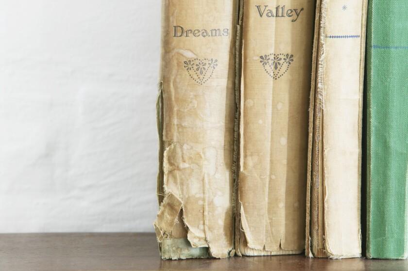 Books - overdue library books