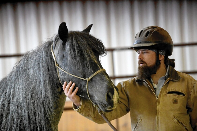 Mitchell Reno, a veteran of Iraq and Afghanistan, works with wild mustang Boo-Yah in April at BraveHearts.