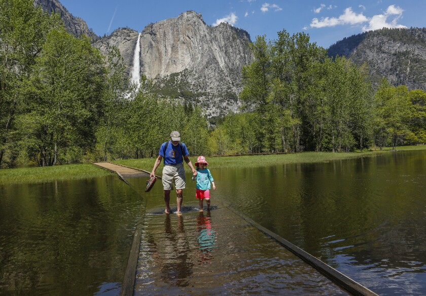 Richard DeYoung and his granddaughter Sienna Milandin walk through a flooded portion of meadow in Yosemite Valley last week.