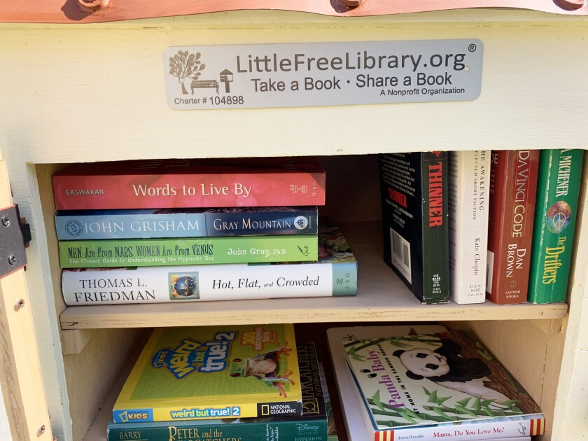 """The first """"shelfie"""" of the Little Free Library."""
