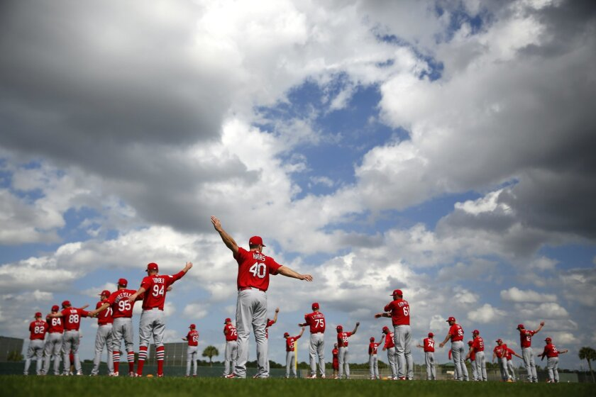 Members of the St. Louis Cardinals stretch at the start of spring training baseball practice Thursday, Feb. 18, 2016, in Jupiter, Fla. (AP Photo/Jeff Roberson)