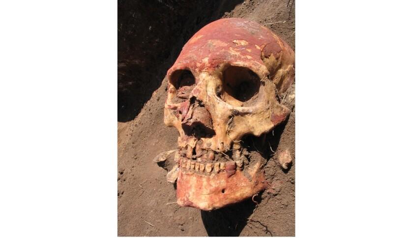 Ancient plague humans