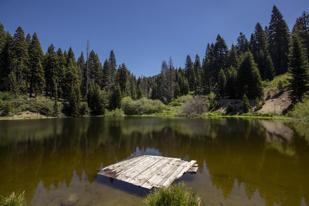 Poppy Lake