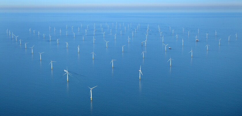 Seals explored spots like the Sheringham Shoal wind farm in southeast England.