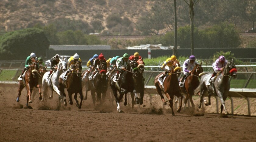 Thoroughbreds race for high stakes at Del Mar's 28th Pacific Classic.