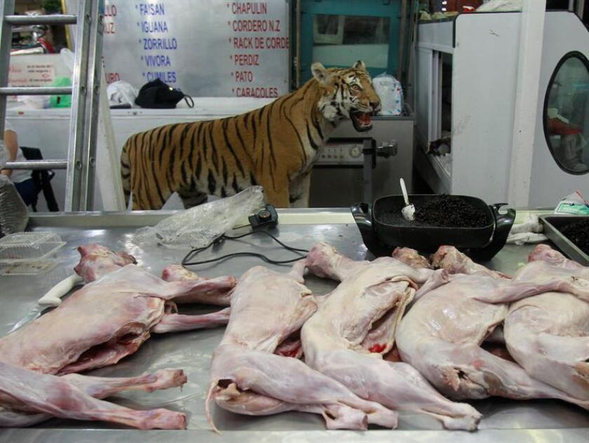 Fotografía de archivo del 17 de mayo de 2017, de la venta de carne de animales exóticos en el mercado de San Juan, en Ciudad de México (México). EFE