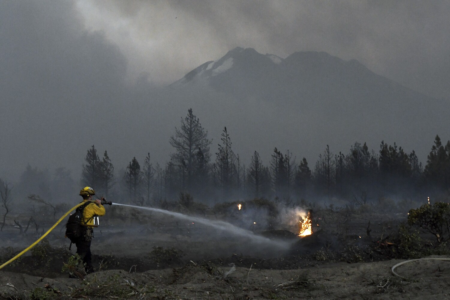 Deputies shoot and kill man as Lava fire encroaches on cannabis country in Siskiyou County
