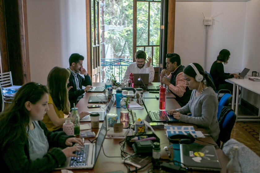 Verificado, a group of 20-somethings who are on the hunt for fake news, work in their office in Mexico City on May 16.