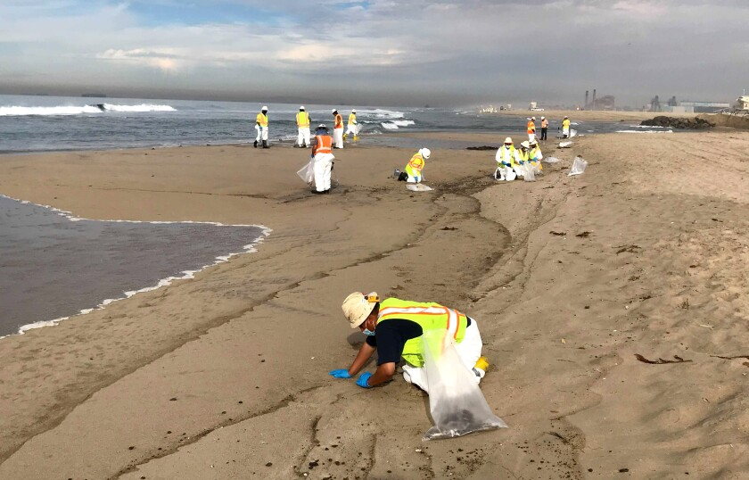 Workers clean up oil along the shoreline