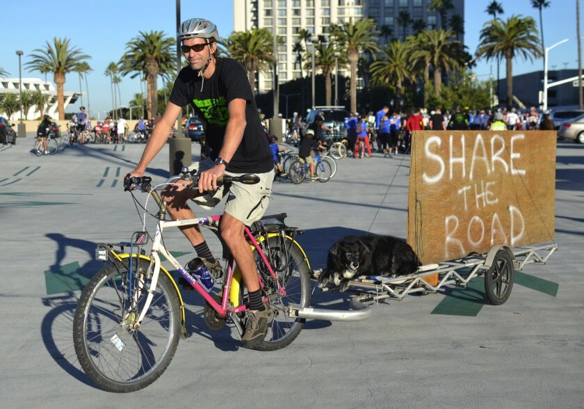 In October 2012, Kurt Bahneman and his dog, Annabelle, prepare for a memorial ride in tribute to two Newport Beach cyclists who died the month before.