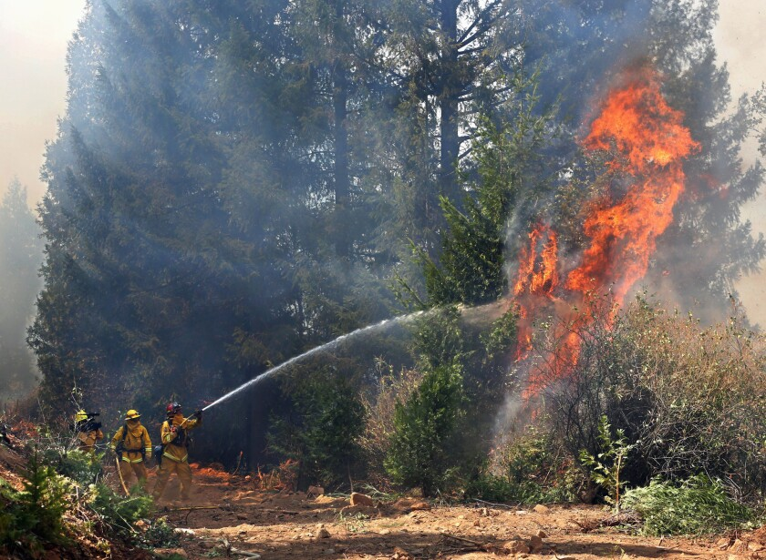 En esta foto del 17 de septiembre del 2014, bomberos combaten un incendio forestal en el área de Fresh Pond, California. Un sondeo en 40 países concluyó que la mayoría de las personas consideran el calentamiento global un problema grave y la mayoría quieren que sus gobiernos limiten las emisiones como parte de un acuerdo climático global que será negociado en París a finales del 2015.