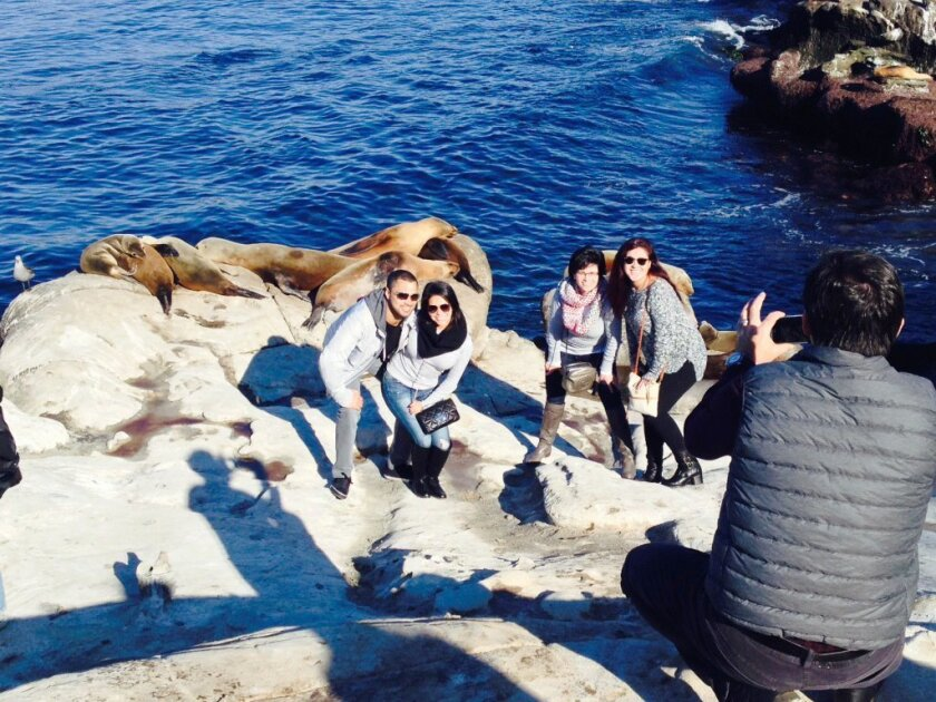 Last week, visitors lined up for a chance to have a photo taken with sea lions resting on the rocks above La Jolla Cove. Getting this close to sea lions (or seals) is prohibited by the Marine Mammal Protection Act.