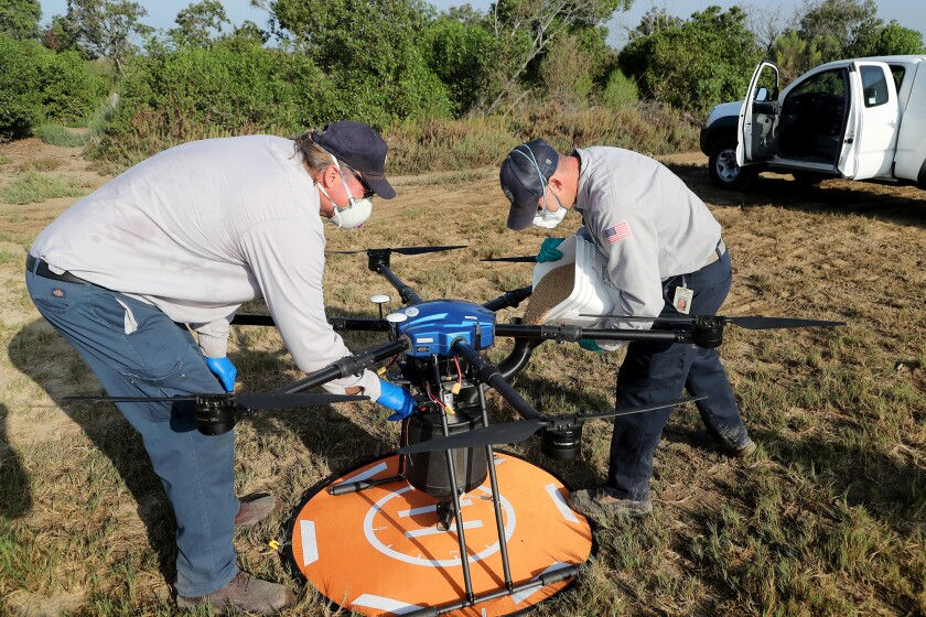 John Savage, right, and John Drake attend to a drone Thursday at Harriett Wieder Regional Park in Huntington Beach.