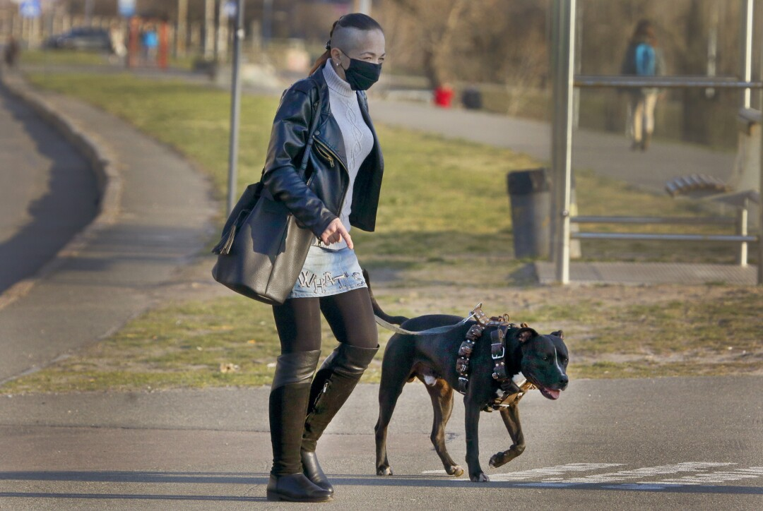 UKRAINE: A woman in a face mask to prevent the coronavirus spread walks a dog in Kyiv, Ukraine, on April 6.