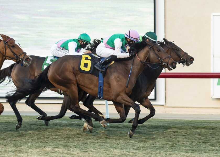 Viadera, outsidE, with Joel Rosario aboard, overpowers Blowout to win the Grade I, $300,000 Matriarch Stakes.