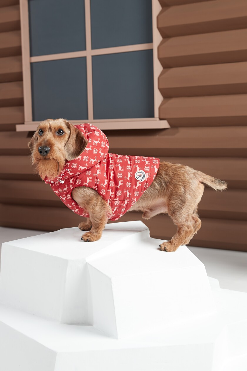 Moncler teamed again with Poldo Dog Couture on new offerings as part of the latest Moncler Genius collaborations. The doggy vests and accessories, which range from $275 to $575, are available now.