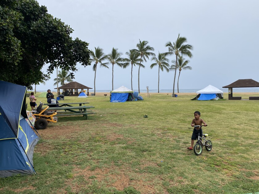 A boy walks his bike across a green space bordered by tents, with palm trees and the ocean in the background.