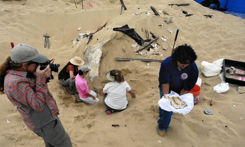 """Archaeologists work to preserve the decaying remains of a sphinx built for Cecil B. DeMille's 1923 silent movie """"The Ten Commandments,"""" which were left in the Guadalupe-Nipomo Dunes after filming wrapped."""