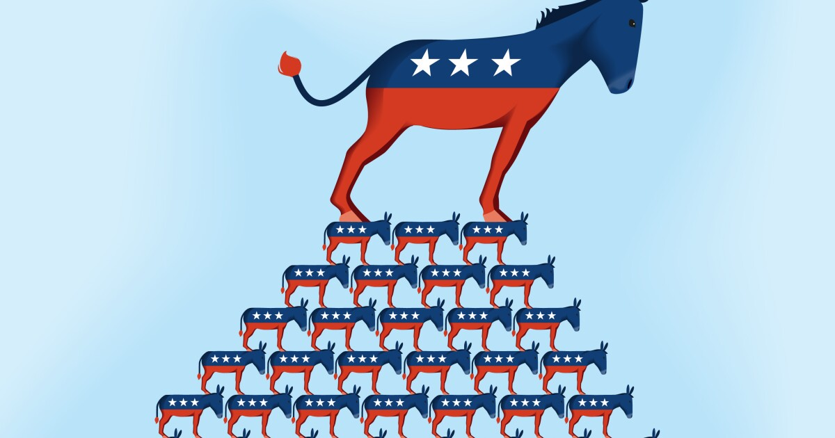 Moderate and progressive Democrats have to unite to win back the White House in 2020