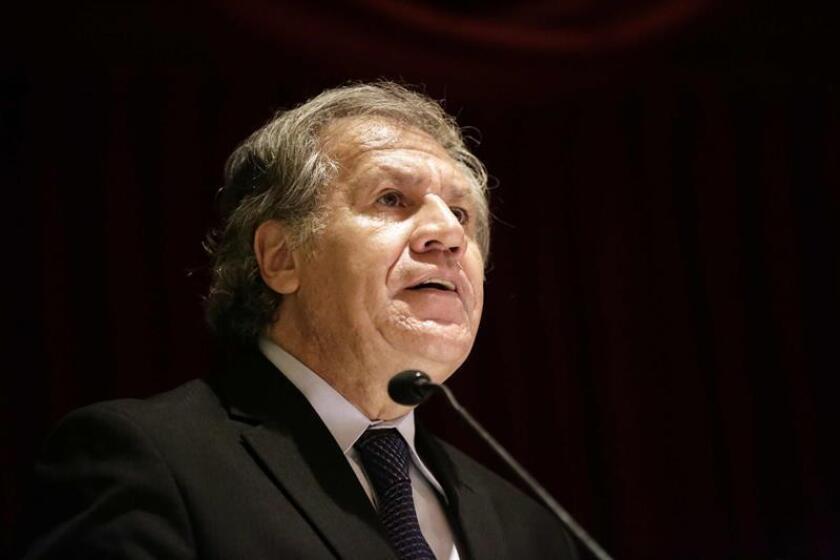El secretario general de la OEA, Luis Almagro, criticó hoy un mensaje de un diputado venezolano opositor sobre el proceso de diálogo con el Gobierno del presidente Nicolás Maduro. EFE/ARCHIVO