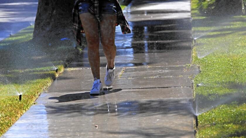 Sprinklers on Sherman Way in the San Fernando Valley soak the sidewalk as well as the grass.
