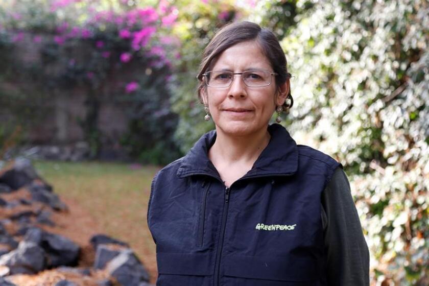 La promotora legal de Greenpace México, María Colín, habla durante una entrevista con Efe este miércoles en Ciudad de México (México). EFE