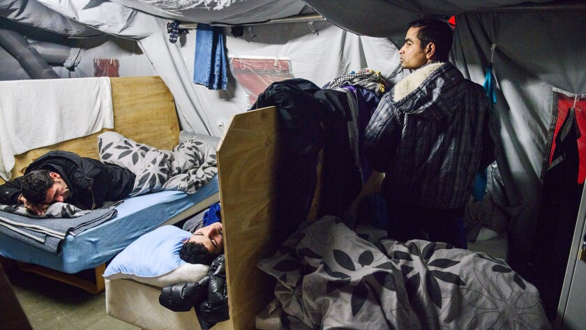 A Jan. 13, 2016, photo shows refugees in their beds at the tent camp in Thisted, Denmark.