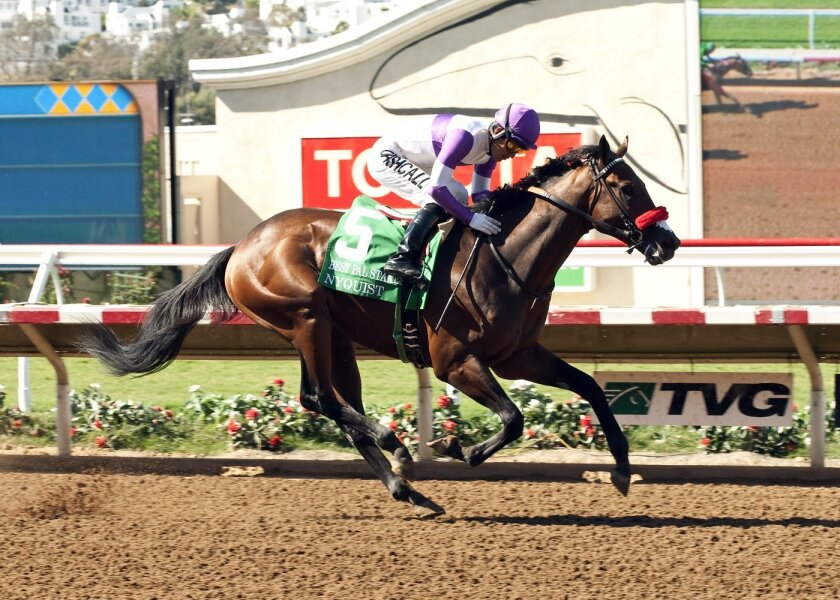 Nyquist wins FrontRunner Stakes to earn berth in Breeders' Cup Juvenile.