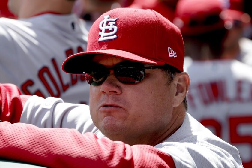 Cardinals Spring Preview Baseball