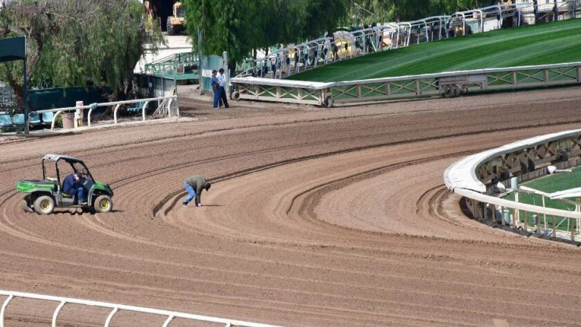 FILES-US-RACE-HORSE-TRACK-SANTAANITA