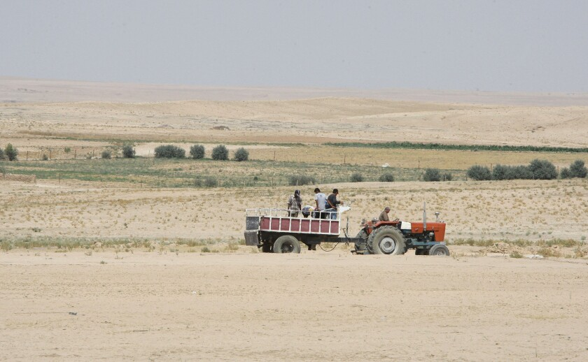 Farmers work in the drought-stricken Hasaka region of Syria in 2010. The current Syrian tragedy provides an important case study of what happens to a society under severe water stress.