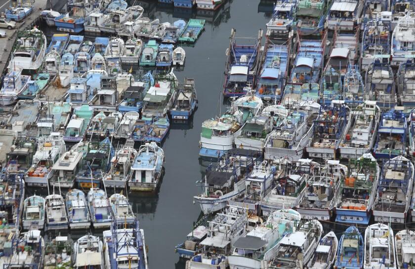 ARCHIVO - En esta imagen del 6 de agosto de 2015, botes pesqueros en un puerto durante un episodio de mal tiempo en el condado de Yilan, en el noreste de Taiwán. Taiwán pidió entrar en un grupo comercial de 11 países del Pacífico, según las autoridades taiwanesas. (AP Foto/Wally Santana, Archivo)